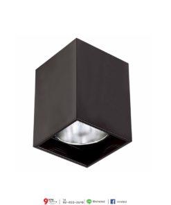 ดาวน์ไลท์ติดลอย กล่องเหลี่ยม สีดำ