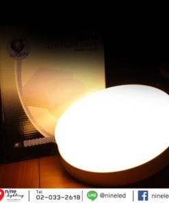 ดาวน์ไลท์ LED ติดลอยหน้ากลม 18W (วอร์มไวท์) IWACHI