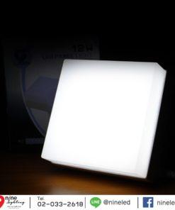 ดาวน์ไลท์ LED ติดลอยหน้าเหลี่ยม 18W (เดย์ไลท์) IWACHI