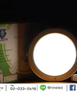 ดาวน์ไลท์ LED 3 แสง 10W (เดย์ไลท์) IWACHI