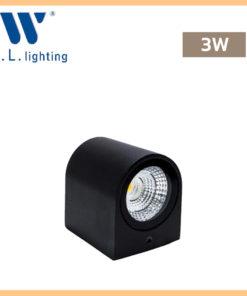 โคมไฟติดผนังภายนอก LED WLLIGHTING รุ่น WL-B11-1-3W-BK